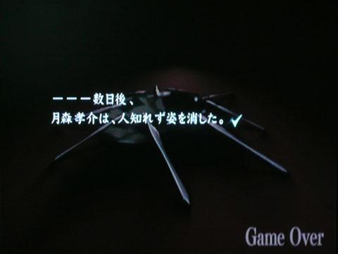 z_01.jpg