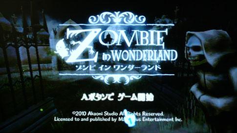 z_in_07.jpg